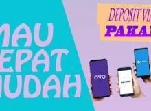 Situs DominoQQ Deposit Via OVO, Gopay, Linkaja, Dana